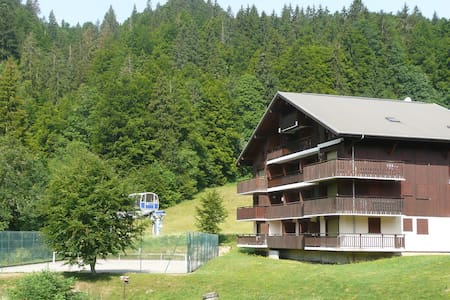 Large studio in a mountain chalet - Bellevaux - Appartement