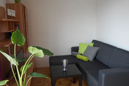 The fully equipped apartment (37 m2) is located close to the center of Graz (app. 10-12 minutes by tram/car) in a quiet neighborhood. Free parking is available. Kitchen with dishwasher and coffee machine. Wifi and new flatscreen TV. Bars, restaurants, supermarket, cinema and gym can be reached in walking distance. The apartment is a perfect place for visiting the city of Graz and the urban hinterlands (e. g. to go hiking).