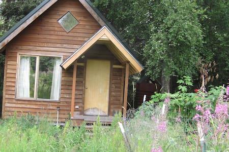 Bird Creek Cabin 30 min. south anch