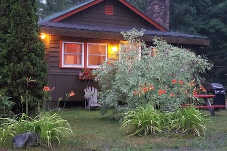 Misty Green Adirondack 2 bedroom Cabin - Johnsburg - Stuga
