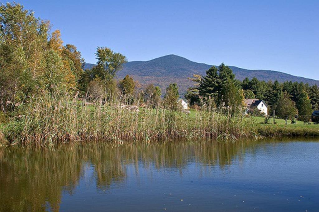 Another view of Mt. Abraham from our spring-fed pond