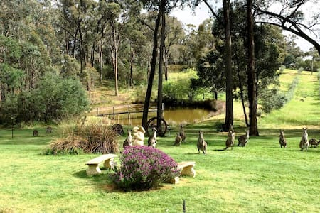 Daylesford Countryside Intimate Retreat - Daire