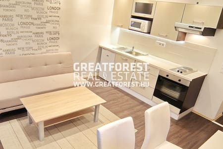 Recently renovated (finished in 2015 october) modern style apartment with free parking and excellent transportation. Tram 1 and 2 and many buses and taxi station nearby. There are a queen sized bed and a couch with a pull out bed.