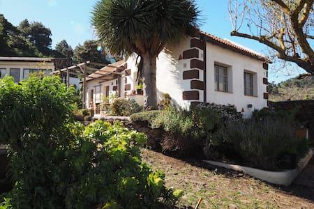 Gemütliche Apartments 2 in El Pinar - Appartamento