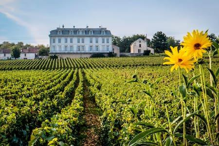 45m2 appt Vineyard View in Chateau - Huoneisto