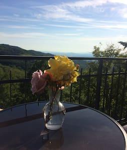 casa wilma - Monticello Amiata - Haus