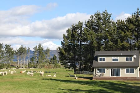 Alpaca Farm Retreat in rural locale - New Plymouth - House