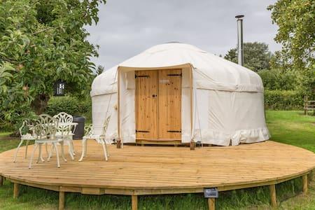 Somerset Orchard Yurt - Wedmore