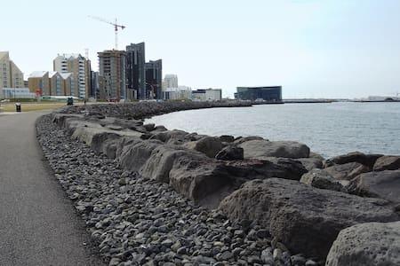 Downtown Reykjavik Apartment