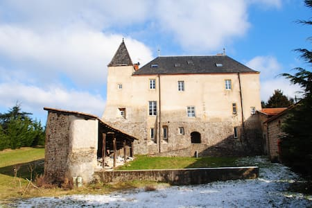 A 1h deLyon - Chambres dans château - Sainte-Colombe - Istana