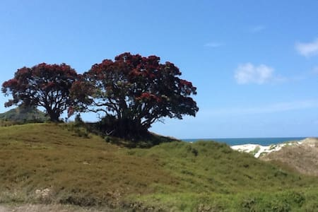Sandhills Beach Hut - Great Barrier Island - Almhütte