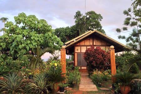 Villa San manuel - Puerto Princesa - Maison