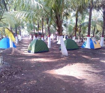 Shanti Camps @ Revdanda Beach - Revdanda - Sátor