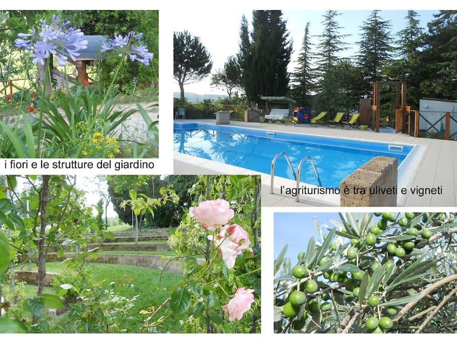 giardini e piscina