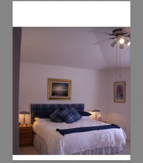 The suite has its own air-conditioning and heating and a ceiling fan, popular in Florida.