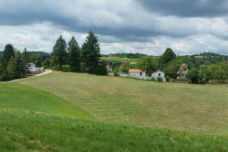Countryside Villa Lazic - Valjevo - Villa