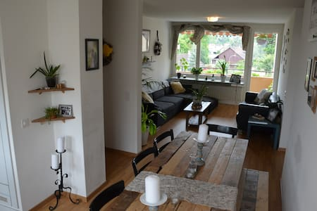 Cozy apartment in suburbs of Zurich - Apartemen