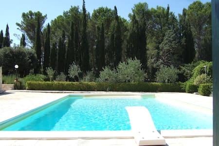 Entire villa with pool. - Martina Franca - Villa