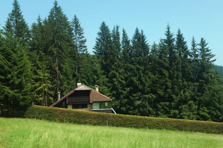 Holiday house with lawn and forest - House