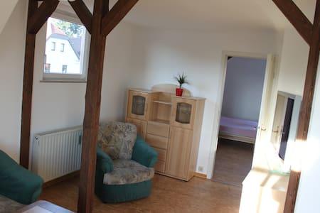 ausgestattete Wohnung in Dresden - Dresden - Apartament