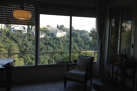 Beautiful Apartment in Haifa