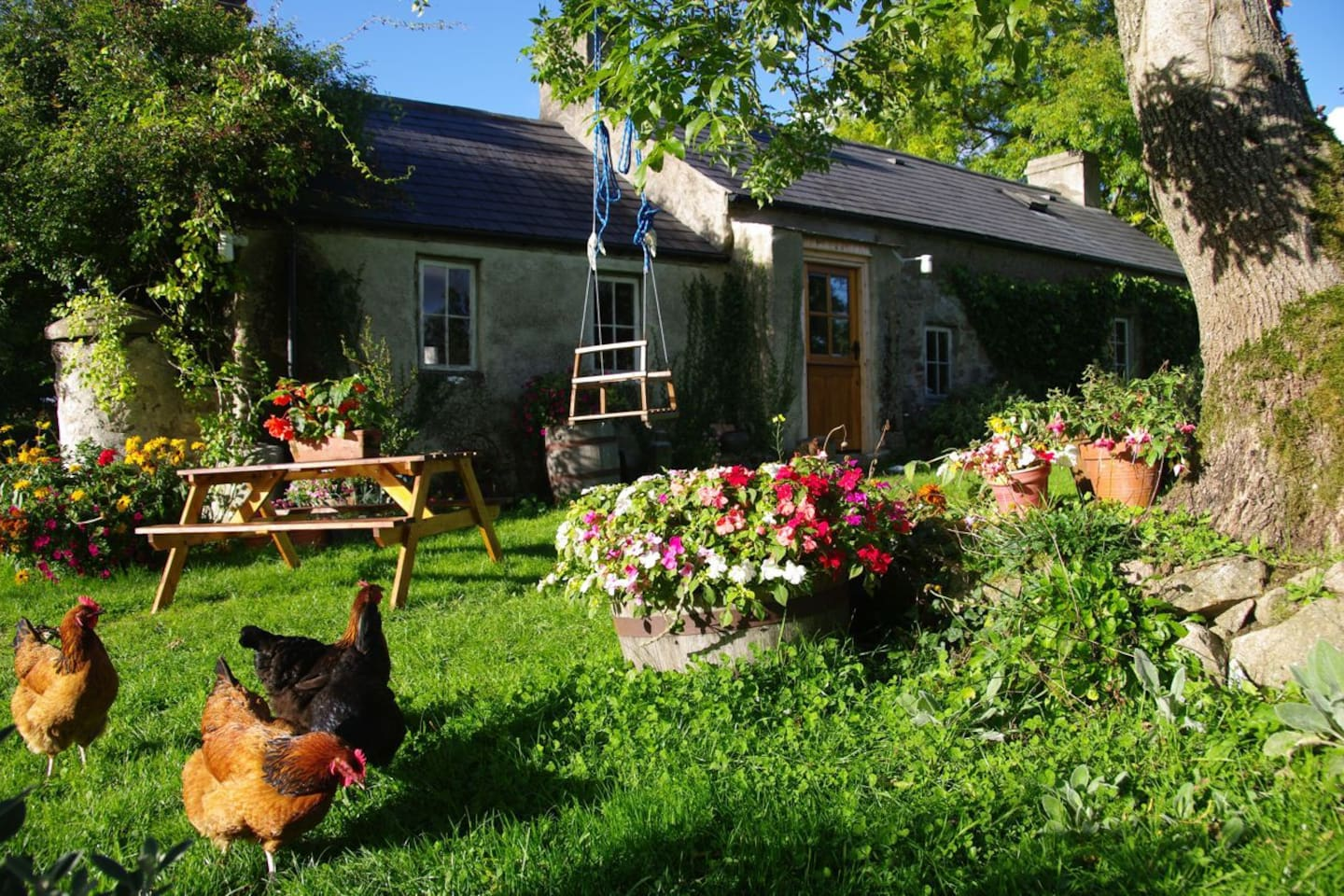 Tullyquilly Cottage, last days of summer