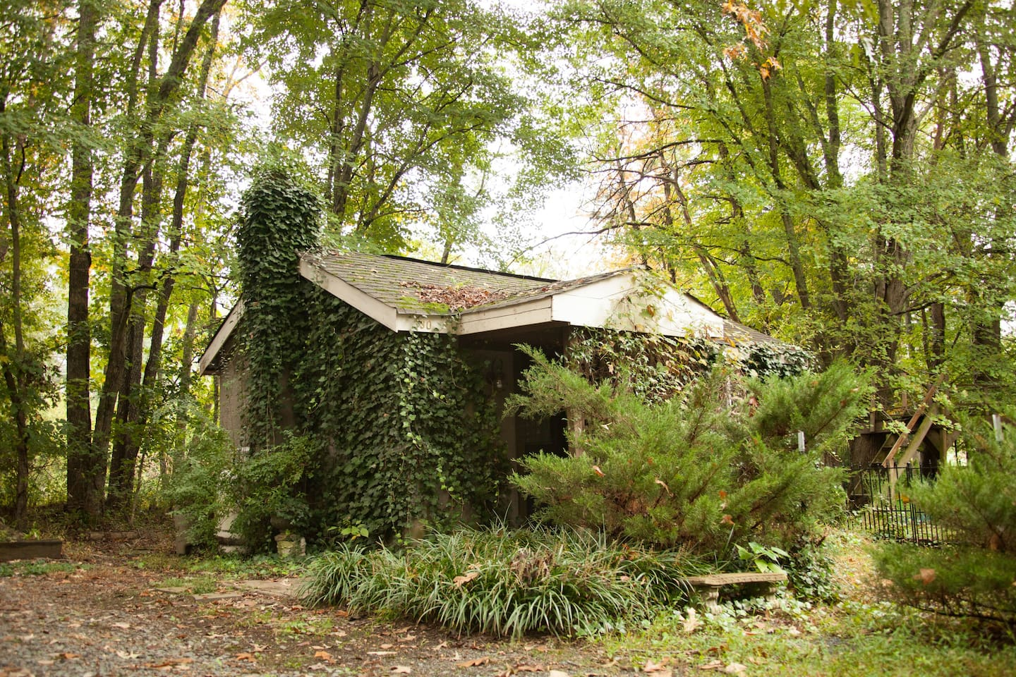 Once upon a time, there was a little ivy covered cottage - the original house on the property.