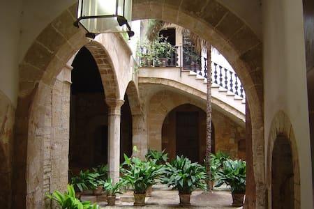Espectacular apartamento en Palacio