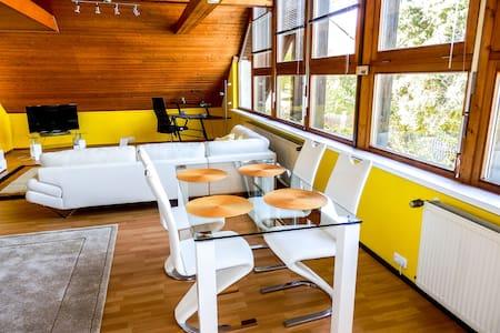 Studio Wohnung Hof nahe Untreusee - Oberkotzau - Wohnung