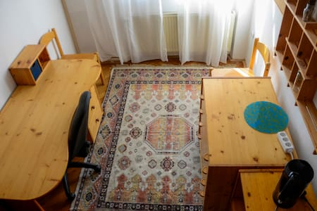 Room has a single bed, wardrobe and a desk. Besides room there is also a shared bathroom and kitchenette. It is sometimes shared with max 2 guests in the other room. Everything is in a walking distance(Old town,. )It is next to the government palace.