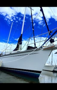Come Sail Away in Historic Downtown