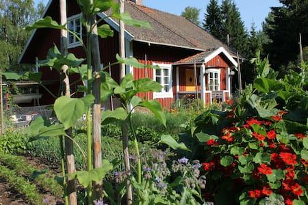 Vildmarks retreat - Casa
