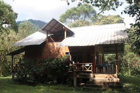 Reserva Las Tangaras Lodge - Outro