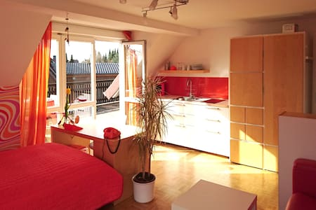 Studio with own terasse and kitchen - Appartement