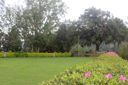 Thalayar Valley Bungalow Tea PlantationExperience - Munnar
