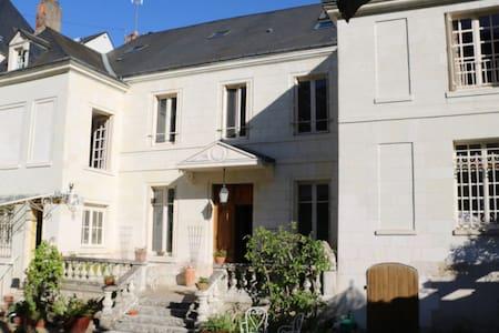 Chambres d'hôtes vue Loire et Châteaux d'Amboise - Amboise - Villa