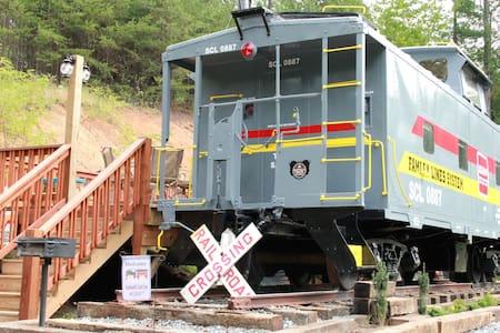 Seaboard CoastLine-Opened 2016 - Vlak