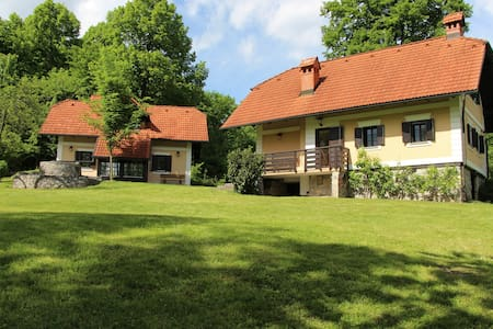 Two country houses near Ljubljana - Haus