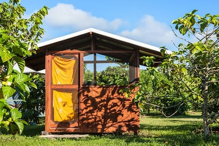 KIRPAL MEDITATION AND ECOLOGICAL CENTER (KMEC)  This little cabin (8 X 8) offers a lovely cozy room which is always dry and comfy inside with a single bed and is secluded in the Milo Forest