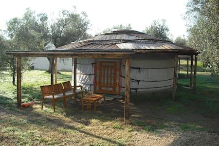 Yurta 3 posti - Yurt