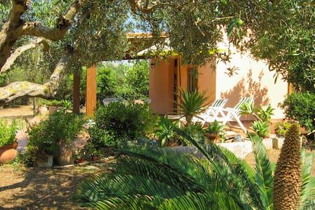 VILLA DEGLI ULIVI HOME HOLIDAY - Castellammare del Golfo - House