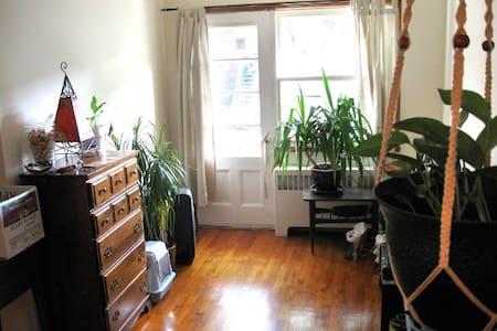 Spacious, sunny Rosemont apartment