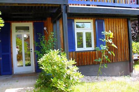 Sonnige Ferienwohnung mit Terrasse - Apartment