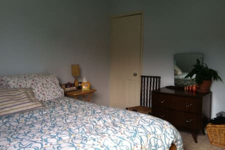 Large airy double room in Sheffield