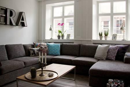 Beautiful space in the heart of CPH - København - Leilighet