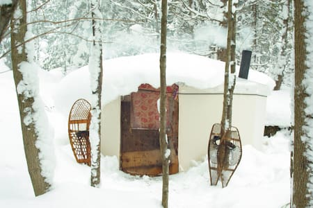 Charming Yurts in the forest