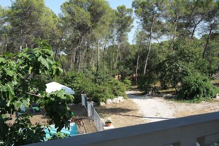 Loft avc grande terrasse sur pinede - Saint Clement de riviere