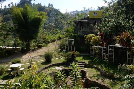 Double Room in Highlands Farmstay - Kelantan