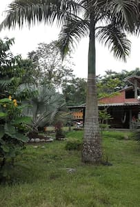 villa julita - Ház