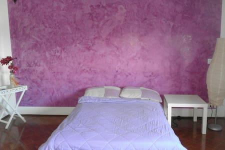 Camera ampia,luminosa, DIVANO LETTO - Apartment